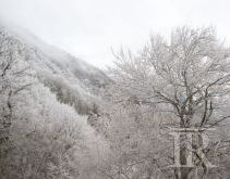 Meteo, nuove nevicate in Irpinia