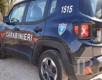 Maxi sequestro a Serino di piante di droga, nei guai un imprenditore agricolo 45enne