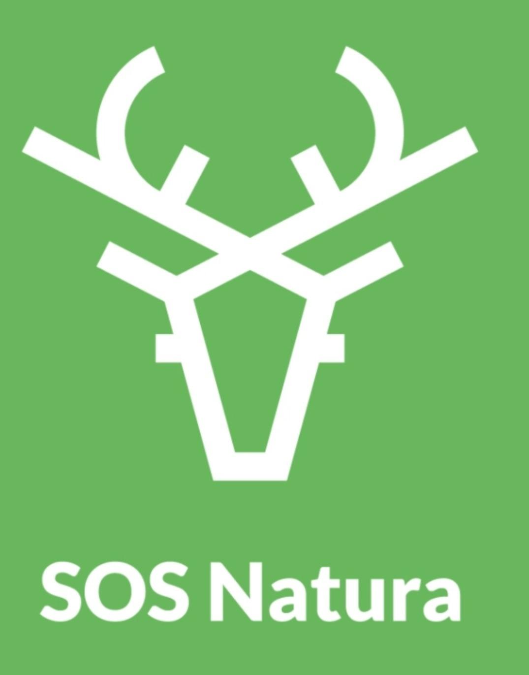 """Tutela dei cinghiali, scende in campo l'associazione Aps Sos Natura: """"No al decreto cattura cinghiali"""""""