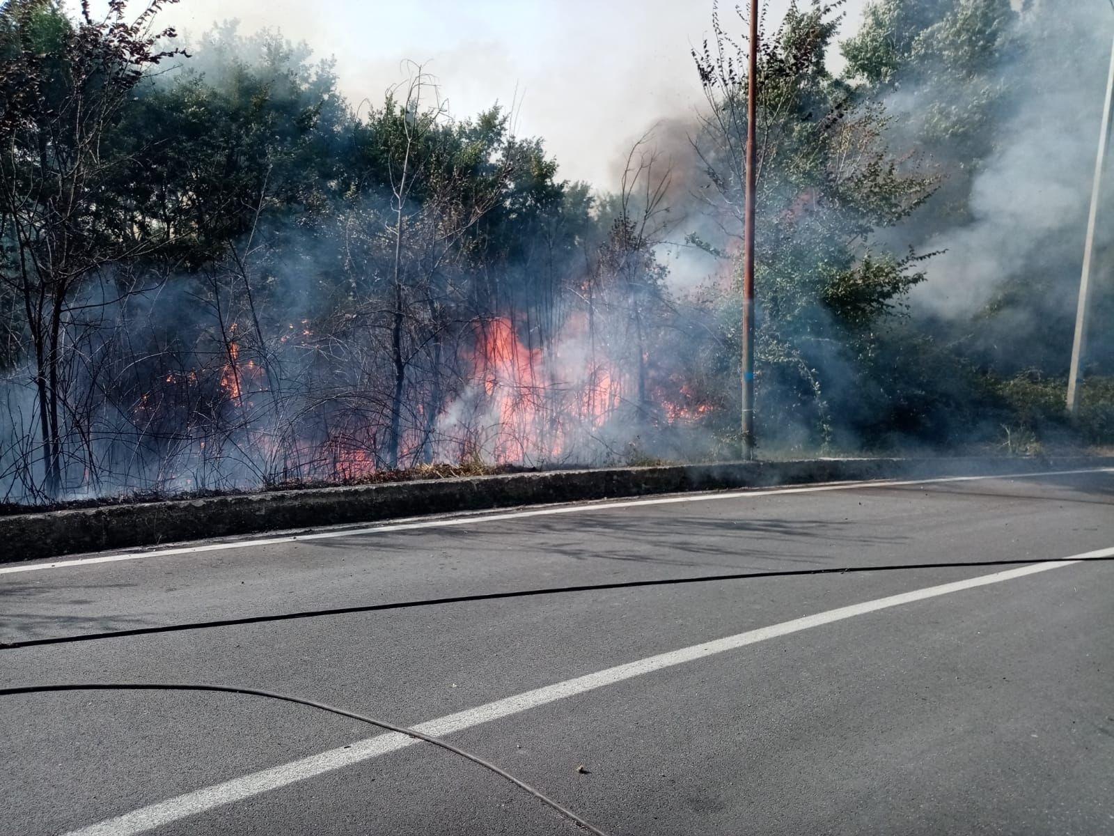 Dà fuoco alle sterpaglie e l'incendio si estende ai terreni dei vicini. Denunciato